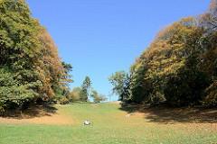 Geesthang an der Elbe in Hamburg Othmarschen, bergige Liegewiese zwischen Herbstbäumen am Hindenburgpark - oben führt die Elbchaussee entlang.