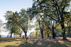 Wiese zum Spielen und Ruhen unter hohen Bäumen bietet  Schröders Elbpark in Hamburg Othmarschen.
