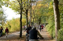 Fußweg / Fahrrad Weg zwischen Herbstbäumen am Elbufer in Hamburg Othmarschen; Fahrradfahrerrinnen und Fußgängerrinnen teilen sich den Weg am Hans Leib Ufer.