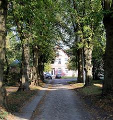 Eine   Lindenallee mit Kopfsteinpflaster führt zu einem historischen Wirtschaftsgebäude in Trittau.