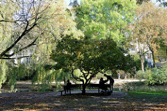 Ruhebank unter einem kleinen Baum in der Grünanlage Am Weiher im Hamburger Stadtteil Eimsbüttel.