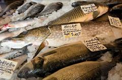 Marktstand eines Fischhändlers auf dem  Wochenmarkt in der Großen Bergstraße, Stadtteil Hamburg Altona / Altstadt; frischer Fisch u.a. Hecht, Karpfen, Lupe de Mar und Makrelen liegen auf Eis in der Auslage.