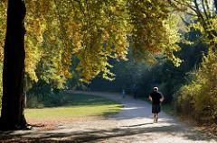 Jogger im Park am Weiher im Hamburger Stadtteil Eimsbüttel; die Sonne strahlt die bunten Herbstblätter in der Grünanlage an.