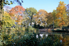 Bäume in leuchtenden Herbstfarben am Weiher im Hamburger Stadtteil Eimsbüttel.