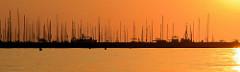 Sonnenuntergang beim Ostseebad Kühlungsborn, die Masten der Segelschiffe in der Marina zeichnen sich im Licht der untergehenden Sonne ab.