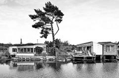 - 2 Blick über die Warnow in Bützow, einfache Wochenendhäuser am Flussufer -eine einsame Kiefer steht windzerzaust zwischen den Datschen.