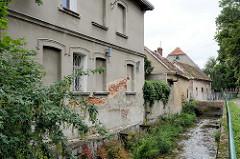 Wohnhäuser  entlang des Baches Kamionka in Pieszyce / Peterswaldau.
