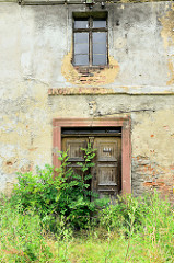 Leerstehendes, verfallendes landwirtschaftliches Gebäude in Pieszyce / Peterswaldau;  Der Eingang mit Holzkassettentür ist von Sträuchern zugewachsen.