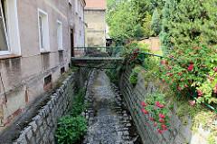 Wohnhäuser am Bach  Kamionka in Peterswaldau / Pieszyce; eine Brücke führt zum Hauseingang, am Geländer blühende rote Rosen.