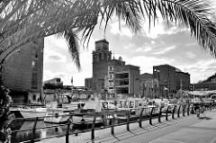 Hafengebiet der Stadt Löwen/Leuven, jetzt Nutzung als Marina für Sportboote, Motorboote; Promenade mit Palme und Sitzbänken - im Hintergrund Ruinen von Industriearchitektur an der Havenkant.