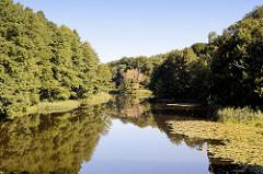 Bis an das Ufer des Finowkanals wachsen die hohen Bäume, die sich im stillen Wasser des Kanals spiegeln.