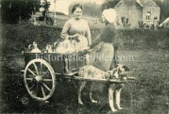 Milchkarren mit Zughund in Belgien - die Milchfrau im Gespräch mit einer Kundin, die einen Trinkbecher in der Hand hält.