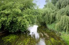 Blick auf den Bütrow-Güstrow Kanal von der Eisenbahnstraße in Güstrow; die Zweige von Bäumen hängen dicht über dem Wasser, das von Wasserpflanzen bedeckt ist. Der Kanal hat eine Länge von 14 km und ist der Überrest einer Binnenwasserstraße von Rostoc
