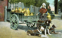 Kolorierte Abbildung eines Milchkarrens in Belgien - Messingkannen stehen auf der Ladefläche; Milchhändlerin mit Milchkanne und Trinkbecher - drei Zughunde sind in der Deichsel des Wagens eingespannt.
