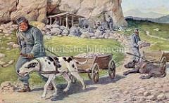 Arbeitshund in der Östereichischen KUK Armee - eine Bergstellung wird ausgebaut - ein Hund zieht mühselig einen Holzkarren mit Gesteinsbrocken.