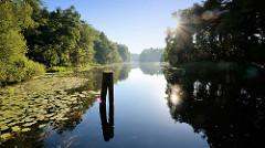 Morgenstimmung am Finowkanal,  die Sonne scheint durch die bis dicht am Kanalufer stehen Bäume.