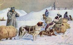 Arbeitshunde / Zughunde - u.a. Bernardiner - mit bepackten Schlitten und bewaffneten österreichischen Soldaten im Schnee machen eine Pause.