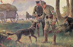Sanitätshund / Suchhund des Deutschen Roten Kreuzes im I. Weltkrieg. Schäferhund mit Rote Kreuz Abzeichen am Halsband - Sanitäter in der Schlacht.