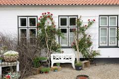 Schlosshof vom Renaissance-Schloß Glücksburg / Ostsee. Die Hausfassade mit roten Rosen / Kletterrosen bewachsen - Blumenkübel und Holzbank.
