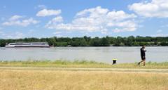 Blick bei der  Nussdorfer Wehr- Schleusenanlage auf die Donau - ein Flusskreuzfahrtschiff fährt donauabwärt.