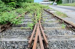 Alte mit Grünpflanzen überwucherte Bahngleise der Güterbahn bei den Stadtwerken am Strandweg in Flensburg.