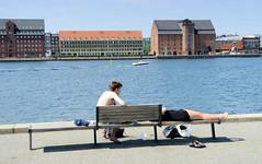 Ruhebank am Wasser - Hafenrand in Kopenhagen, Blick auf Speichergebäude am Larsens Plads.