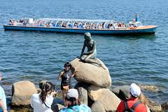 Touristen besuchen die Kleinen Meerjungfrau an der Uferpromenade Langelinie in Kopenhagen. Bronzefigur nach dem Vorbild in dem gleichnamigen Märchen des dänischen Dichters Hans Christian Andersen; Bildhauer Bildhauer Edvard Eriksen, 1913.