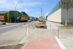 Bilder aus dem Hamburger Stadtteil Billbrook - Abgeschlossenen Bauarbeiten an der Liebigstraße, ein neuer Radweg wurde installiert und junge Bäume gepflanzt.