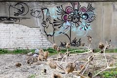 Bilder aus dem Hamburger Stadtteil Billbrook - abgeplatzter  Putz einer Ziegelmauer mit Graffiti in der Wöhlerstraße.