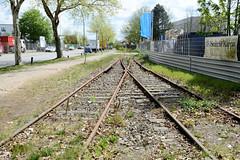 Fotos von Hamburgs Stadtteil Billbrook, Bezirk Hamburg Mitte - kaum genutzte, stillgelegte Bahngleise im Gewerbegebiet an der Bredowstraße; Wildkraut wuchert zwischen den Gleisen.