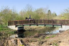 Holzbrücke über die Bille - eine Reiterin überquert den Hamburger Fluss bei Billwerder.