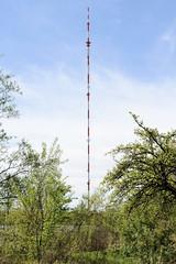 Bilder aus dem Hamburger Stadtteil Billbrook - Moorfleeter  Sendemast des Norddeutschen Rundfunks.
