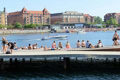 Holzsteg - Badesteg am Hafenrand von Kopenhagen - am gegenüberliegende Ufer liegt eine Badeanstalt und Wohnblocks in der Straße Islands Brygge.