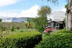 Fotos  aus dem Hamburger Stadtteil Rothenburgsort - Bezirk Mitte. Schrebergarten / Kleingarten vom Gartenbauverein Bahnhof Tiefstack - im Hintergrund Gebäude der Betriebswerkstatt Nordbahn.