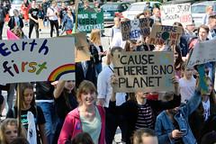 Demonstration Friday for the Future - globaler Klimastreik am 24.05.19 in der Hansestadt Hamburg. DemonstrantInnen protestieren mit selbstgemalten Schildern / Plakaten.