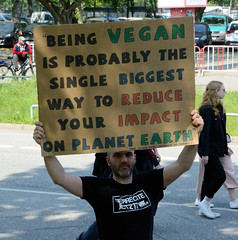 Demonstration Friday for the Future - globaler Klimastreik am 24.05.19 in der Hansestadt Hamburg. Demonstrant mit Prostesplakat - Being vegan is probably the singel biggeste way to reduce your impact on planet earth.