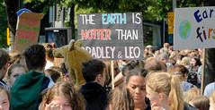 Demonstration Friday for the Future - globaler Klimastreik am 24.05.19 in der Hansestadt Hamburg. DemonstrantInnen protestieren mit selbstgemalten Schildern.
