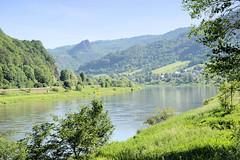 Die Elbe bei Male Brezno nad Labem in Tschechien.