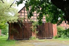 Bilder von  Küsten,  Gemeinde im Landkreis Lüchow-Dannenberg - Metropolregion Hamburg;  Fachwerkscheune mit zwei Holztoren, blühender Rosenstrauch.