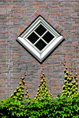 Bilder aus dem Hamburger Stadtteil Hoheluft Ost - Bezirk Hamburg Nord. Rautenfenster / Rankpflanzen, Fassade vom  Gymnasium Curschmannstraße - Architekt Fritz Höger, 1928.
