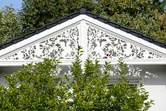Marienthal ist ein Hamburger Stadtteil im Bezirk Hamburg Wandsbek. Geschnitzter Holzgiebel  eines Wohnhauses in der Octavius Straße - das Gebäude steht unter Denkmalschutz und wurde ca. 1880 errichtet.