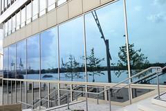 Fotos aus dem Hamburger Stadtteil Hafencity - Bezirk Hamburg Mitte. Glasfassade der HafenCity Universität Hamburg – Universität für Baukunst und Metropolenentwicklung an der Überseeallee - die Elbe spiegelt sich in den Fenstern.