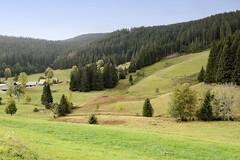 Quelle der Breg in Furtwangen - Schwarzwald in Baden-Württemberg; Hauptquellfluss der Donau, hydrologische Donauquelle. Blick über das Donautal nahe der Quelle in Furtwangen.