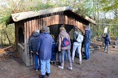 Fotos vom Forst Klövensteen im Hamburger Stadtteil Rissen; BesucherInnen beobachten die eingesperrten Frettchen in ihrem Käfig.