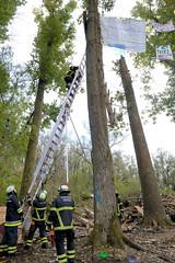 Fotos aus dem Vollhöfner Wald in Hamburg Finkenwerder. Das Baumhaus der Waldbesetzer*innen wurde am 26.10. von der Polizei niedergerissen - Reste liegen auf dem Waldboden; Feuerwehrleute steigen mit einer Leiter in die Bäume, in denen noch die Transp