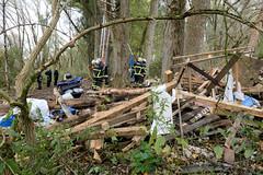 Fotos aus dem Vollhöfner Wald in Hamburg Finkenwerder. Das Baumhaus der Waldbesetzer*innen wurde am 26.10. von der Polizei niedergerissen - Reste liegen auf dem Waldboden; Feuerwehrleute steigen mit einer Leiter in die Bäum