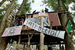 Bilder vom Vollhöfner Wald in Hamburg Finkenwerder. Baumhaus - besetzter Waldabschnitt, Transparent VÖLLI BLEIBT.