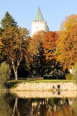 Die Stadt Lauingen , Donau liegt im Landkreis Dillingen im Donautal in Bayern. Blick über die Donau,herbstlich gefärbte Bäume stehen am Donauufer, dahinter der Schloßturm.