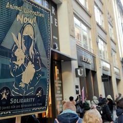 Demonstration gegen den Pelzhandel bei der Modekette ESCADA in der Hamburger Innenstadt. Protestplakat - Animal Liberation Now - Tierbefreier.