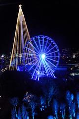 Nachtaufnahme in Göteborg - Blick auf das Riesenrad und Lichtbaum im Vergnügungspark Liseberg